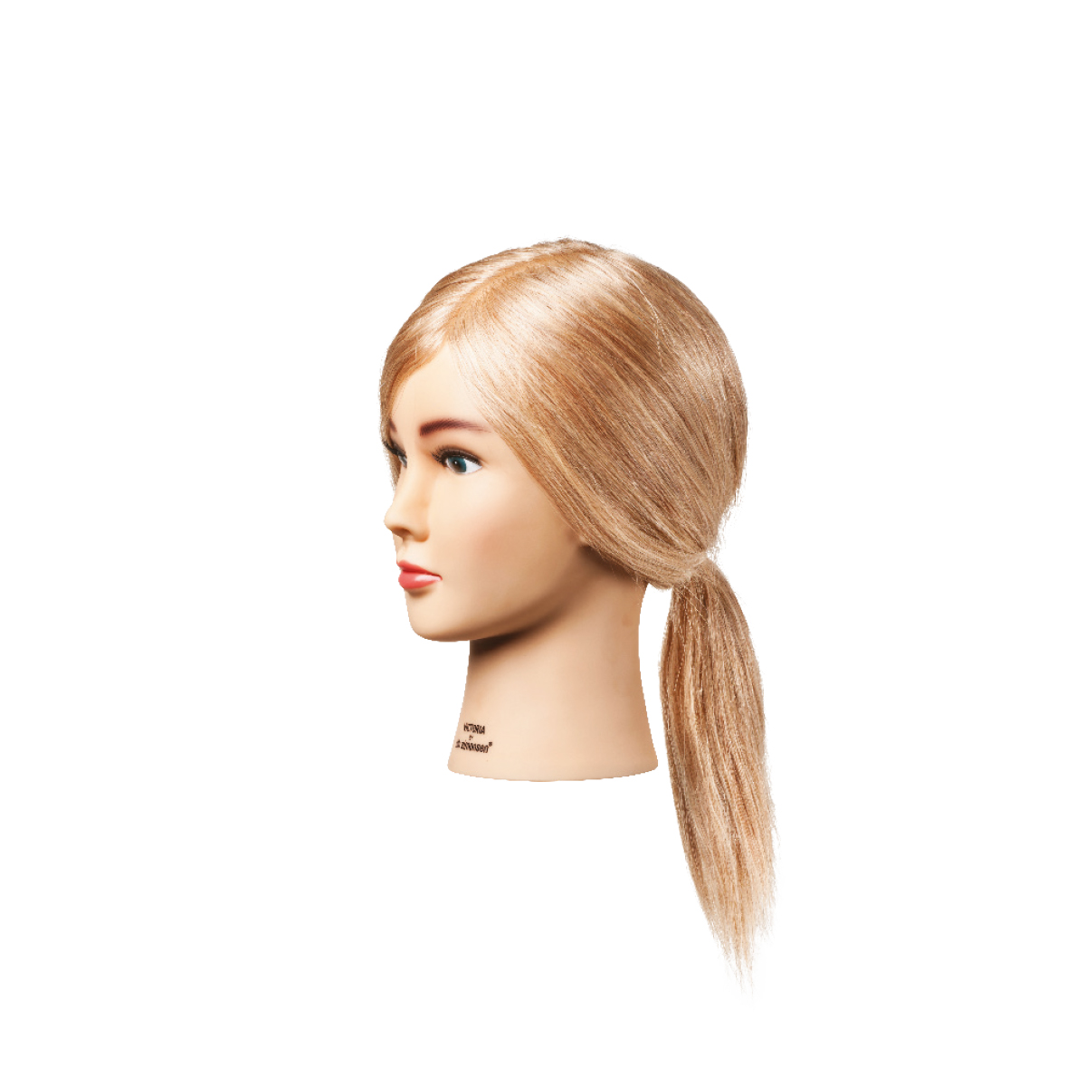 Testamodella victoria capelli veri 30 cm – biondi** MINUTERIA VARIA IN ASSORTIMENT