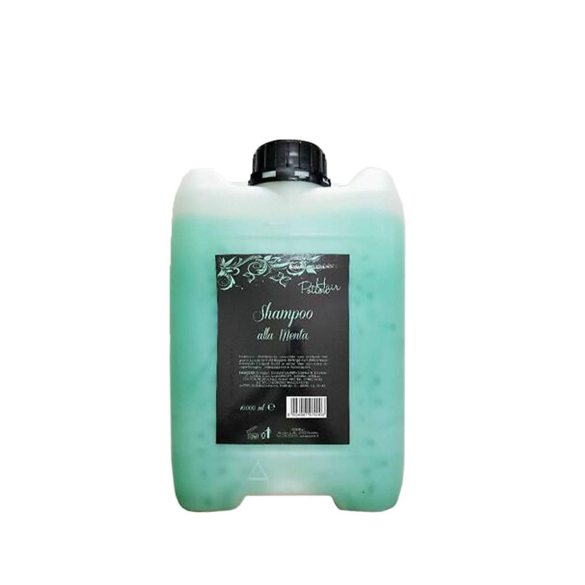 Seta shampoo tanica 10l menta SHAMPOO